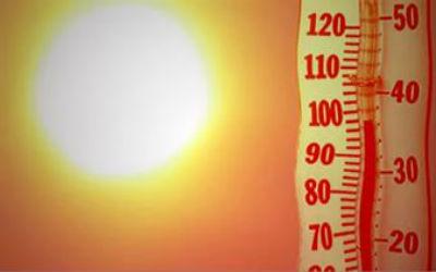 В Волгоградской области 2015 год оказался самым теплым